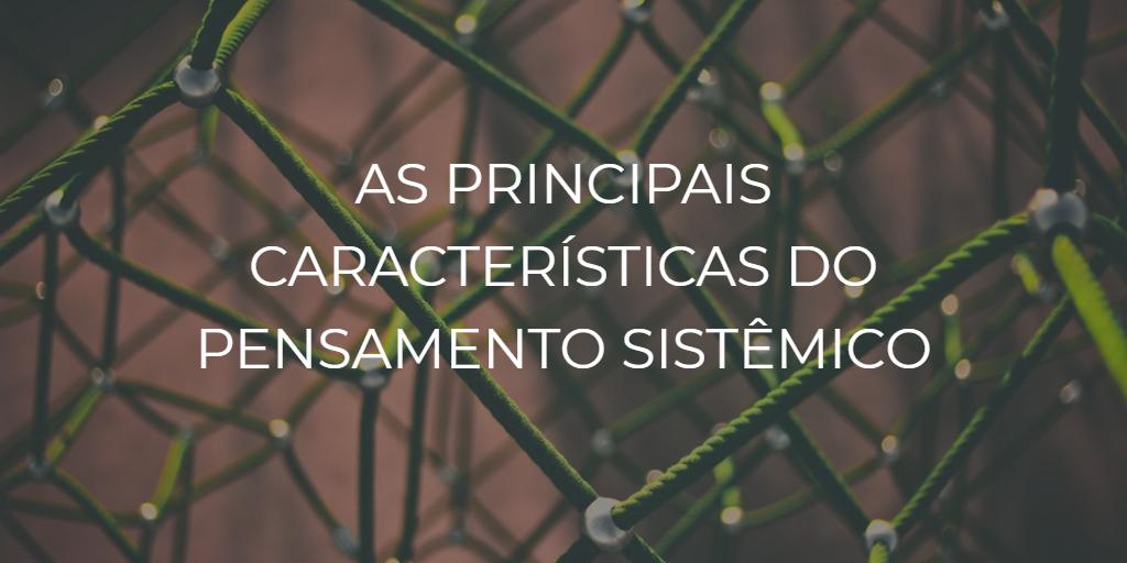 As principais características do pensamento sistêmico - Instituto de Desenvolvimento Regenerativo