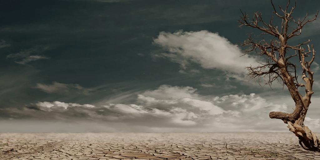 A separação ecológica
